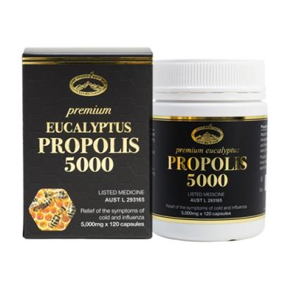 PREMIUM EUCALYPTUS PROPOLIS 5000